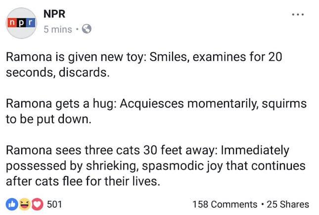 NPR social media post